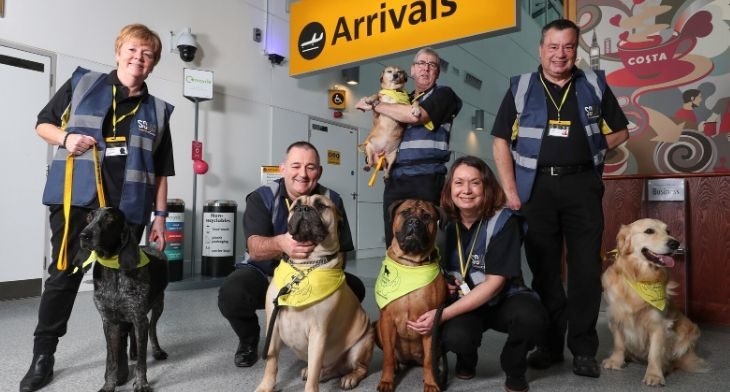 Southampton Airport introduces canine crew